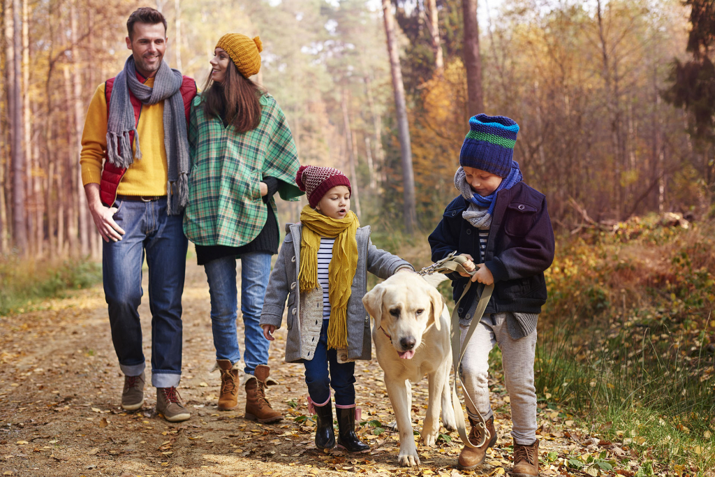 walking-with-all-family-autumn-seasonn.jpg