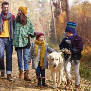 walking-with-all-family-autumn-season.jpg